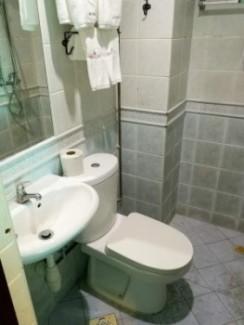 ゼン ルームズ(ZEN Rooms 1515)のトイレ