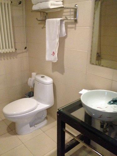RJ-Brown-hotel-beijing-toilet